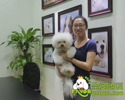 宠物美容师证书都有哪些
