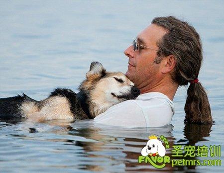 女人与狗欢爱_梅特格曾经这么表示,狗狗可能不会以人类的方式来感受爱,但它们愿意将