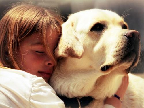 小孩与动物和谐的图片