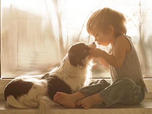怎么让狗狗与孩子友好相处